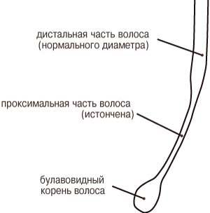 Рецепт горчичной маски для роста волос с репейным маслом